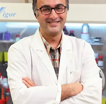 Amin Salehi-Khojin, associate professor of mechanical and industrial engineering at UIC's College of Engineering
